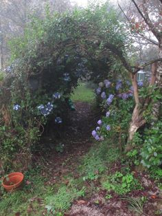 My secret Garden Garden Nook, Garden Arches, Garden Gates, Garden Entrance, Garden Trellis, My Secret Garden, Dream Garden, Beautiful Gardens, Beautiful Things