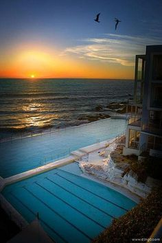 Wish I had swam in this lido while I was in Australia, but it was winter! In Bondi, Sydney. Vacation Trips, Vacation Spots, Oh The Places You'll Go, Places To Travel, Bondi Icebergs, Beautiful Places, Beautiful Pictures, The Sound Of Waves, Fantastic Voyage
