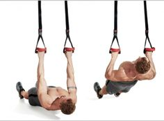 Gym routines for men: Build muscle, burn fat, and transform your body with these essential moves. Gym Routines For Men, Daily Exercise Routines, Suspension Workout, Suspension Trainer, Good Back Workouts, Back Exercises, Trx Training, Weight Training, Strength Training