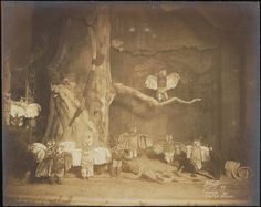Chantecler - 1911 gelatin silver prints - Museum of the City of New York