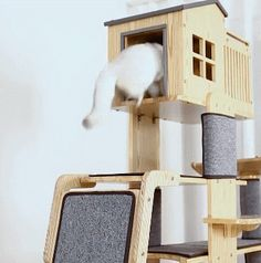 Luxury Cat Climbing Frame Solid Wood Tree