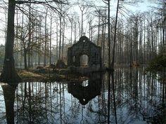 "nordicsublime: ""Chapel ruins at Cypress Gardens """