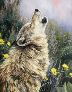 A painting of a gray wolf howling.To provide with the best quality reproduction this painting was photographed by a professional photographer. He creates reproduction-quality digital files by direct capture, using a state-of-the-art Hasselblad camera. Timberwolf, Wolf Painting, Drawn Art, Wolf Pictures, Call Art, Wolf Howling, Arte Pop, Wildlife Art, Animal Paintings