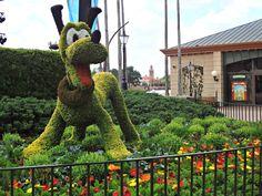 pluto at epcot flower garden show