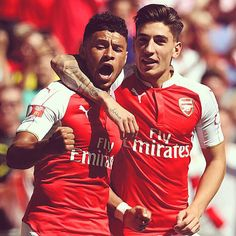 Hector and the ox