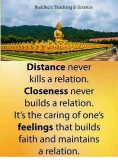 Metta for World Peace. here you are going to learn about buddhism the phislophy of life. Buddha Thoughts, Good Thoughts, Buddhist Quotes, Buddha Quote, Life Philosophy, Teaching Science, Background Templates, Healthy Relationships, Thought Provoking