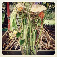 technique alternative, arrangement, printemps