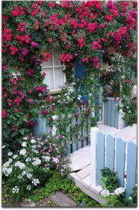 小さなバラの庭づくり ウッドチップス 庭 づくり 庭のアイデア バラ