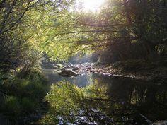 Uno de los pocos ríos donde aún se puede respirar la tranquilidad, mi rincón favorito.