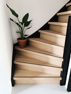 Interior Stairs, Interior And Exterior, Interior Design, House Paint Interior, Home Hall Design, House Design, Staircase Makeover, House Stairs, House Entrance