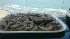 Pescado....maurobarbuto il piu grande cuoco ancora vivente