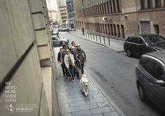 Belgian Centre for Guide Dogs: Street | Ads of the World™