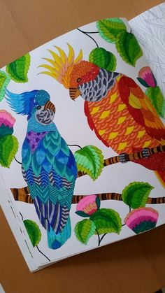Tropical World by Millie Marotta,  coloring book