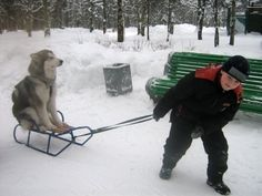 In Soviet Russia, dog on sled gets pulled by you!