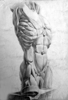 Exceptional Drawing The Human Figure Ideas. Staggering Drawing The Human Figure Ideas. Academic Drawing, Academic Art, Drawing Studies, Human Anatomy Drawing, Body Drawing, Life Drawing, Drawing Art, Drawing Proportions, Human Figure Drawing