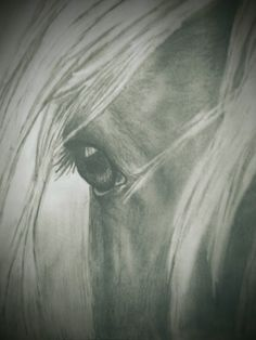 Horse, hand drawn! For purchasing options email me at rusticdecorstore84@gmail.com