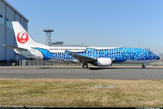 Photos: Boeing 737-4Q3 Aircraft Pictures | Airliners.net