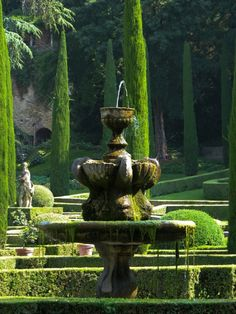 leodowell: hermitguides: Giardini Giusti, Verona, Italy(via Venice Veneto Lombardy) The Garden of Eden could not have been any more beautiful!