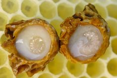 Learn all about this bee superfood - royal jelly. Find out what royal jelly is made of, how it's taken and whether the evidence supports the health claims. Aloe Vera, Royal Jelly Benefits, Savannah Bee, Worker Bee, Food Lab, Bee Pollen, Cancer Cure, Queen Bees, Royal Jelly