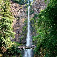 Hike to Multnomah Falls for the waterfall wonders in the forest