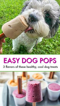 Easy Dog Pops - just a few ingredients to make these dog popsicles to keep them cool this summer! Puppy Treats, Diy Dog Treats, Healthy Dog Treats, Summer Dog Treats, Pumpkin Dog Treats, Healthy Foods, Dog Biscuit Recipes, Dog Treat Recipes, Dog Food Recipes