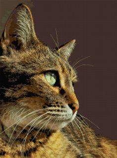 Thinking cat. Free cross stitch pattern