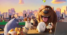 Movie Geek Feed Movie Tv Comic Book And Entertainment News Ready For A New Secret Life Of Pets 2 Secret Life Of Pets Secret Life Universal Studios Rides