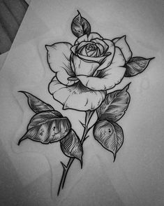 Trendy tattoo old school rose design flower ideas Tattoo Design Drawings, Tattoo Sketches, Tattoo Designs, Rose Drawing Tattoo, Tatoo Rose, Body Sketches, Body Art Tattoos, New Tattoos, Tatoos