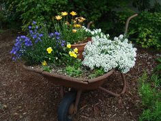 Many of your chippy, rusty, weathered containters can easily be transported to the garden to be used for container plants. Stunning old wheelbarrow is now a container for pretty blooming flowers! Flower Planters, Garden Planters, Garden Art, Garden Ideas, Backyard Ideas, Backyard Picnic, Patio Ideas, Garden Design, Unique Gardens