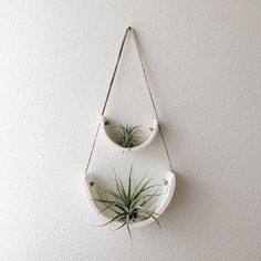 Developed to showcase each air plant's individual beauty, thisair plant cradle isthe ideal balance between sculpture and functionality.
