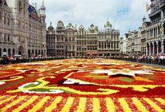 Fotos plazas. Grand Place, Bruselas (Bélgica). Todo-Mail