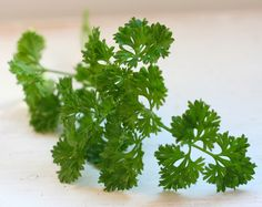 Line-Cook Secrets Every Home Chef Should Know A pinch of fresh parsley or other herbs masks freezer tasts for frozen veggies Healthy Recepies, Healthy Herbs, Healthy Drinks, Vegetarian Main Dishes, Detox Smoothies, Home Chef, Foods With Gluten, Medicinal Herbs, Health And Wellbeing