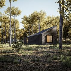 The retreat will include three cabins clad from roof to wall in blackened, locally sourced wood, each featuring a kitchenette, bathroom, bedroom, and utility and storage rooms finished in plywood. Wooden Lodges, Wooden Cabins, Hotels In Romania, Canton House, Cedar Cabin, Off Grid Cabin, Wood Shingles, Luxury Cabin, Refuge