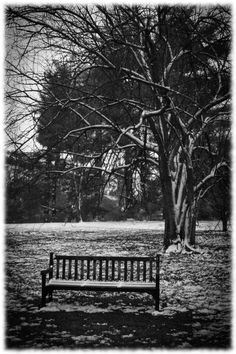 Park Bench In The Winter on Etsy, $70.00