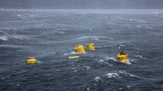 WaveNet, la rete che raccoglie energia dal mare #energYnnovation #acqua