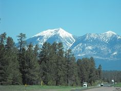 Oh, how we loved this sight.  It meant we had made it to Flagstaff.  I do  miss Flagstaff, AZ.