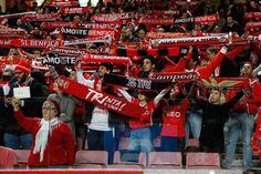 SL Benfica EN (@slbenfica_en) | Twitter