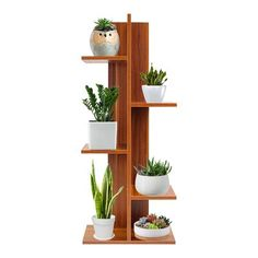 Easy Projects, Wood Projects, Woodworking Projects, Project Ideas, House Plants Decor, Plant Decor, Plant Shelves, Wood Shelves, Square Columns
