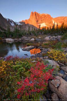 Fall Colors by Koveh Tavakkol, via 500px; Rocky Mountain National Park, Colorado