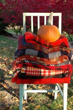 "elegant-autumn: "" trickortreat-smellmyfeet: """