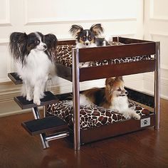 If you have multiple pets, our Espresso Metropolitan Double Pet Bed is the perfect resting place. This innovative, solid wood bunk-style pet bed has sleek, modern lines that complement any contemporary decor.