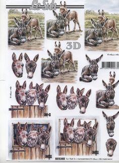 Le Suh Cut out sheet anistencils 8215 402 - Animals 3d Pictures, Photos, Image 3d, Farm Fun, 3d Sheets, 3d Pattern, Patterned Sheets, Picture Postcards, 3d Cards