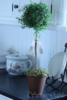 topiary with tut.