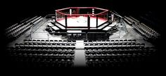 fighting ring - Google Search