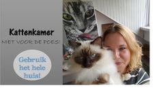 Kattenkamer | je kat gebruikt liever het hele huis