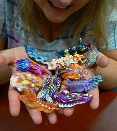 Polymer Clay Nudibranch ~ Handful of wiggly, colorful nudis!