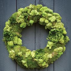 Wreath expert James Farmer offers tips for creating a moss wreath in time for… Moss Wreath, Diy Wreath, Easter Wreaths, Christmas Wreaths, Spring Wreaths, Lavender Wreath, Deco Floral, Garden Crafts, Crafty Projects