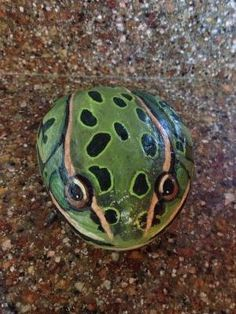 Leopard Frog Painted Rock by EquestrianCreations on Etsy by elvira