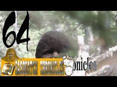 64 youtube