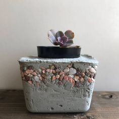 cute gray concrete planter pot square with ring of small pink white and natural rocks around the top handmade for succulents flowers and plants Cement Art, Concrete Cement, Concrete Crafts, Concrete Projects, Diy Concrete Planters, Concrete Garden, Wooden Planters, Wall Planters, Succulent Planters